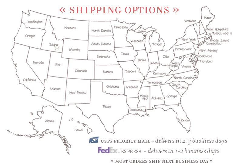 One Small Child Domestic Shipping Map
