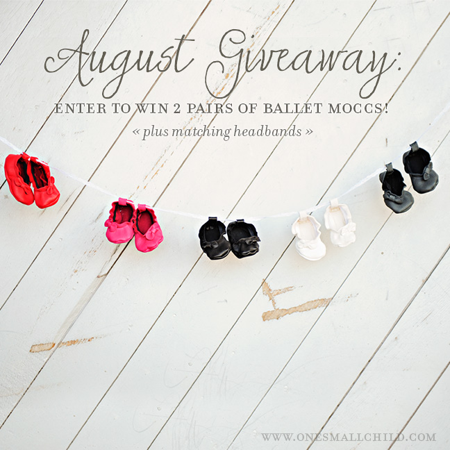 Baby Moccasin Giveaway   - One Small Child