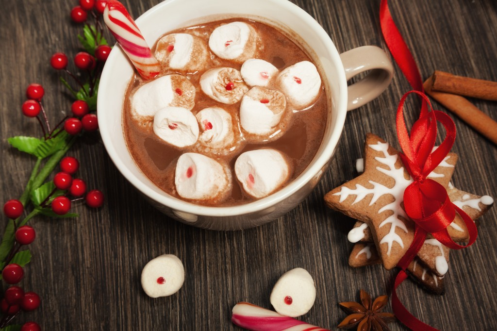 Christmas cookies and hot chocolate - One Small Child